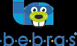 """Respublikinis informatikos konkursas """"Bebras 2020"""""""