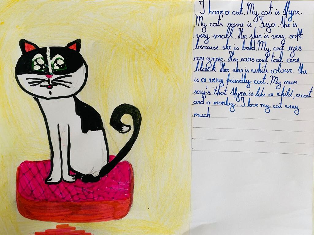 """Tarptautinis integruotas anglų kalbos bei dailės ir technologijų kūrybinių darbų virtualus konkursas """"MY PET"""""""